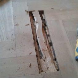 echtholzparkett reparieren wohnung26 - Eichen Echtholz Parkett aufbereiten und kaputte Stäbe auswechseln