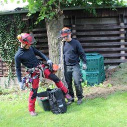 baumfaeller121 - Der Baum muss weg – Kletterer am Werk