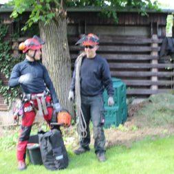 baumfaeller141 - Der Baum muss weg – Kletterer am Werk