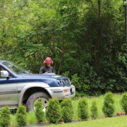 baumfaeller471 - Der Baum muss weg – Kletterer am Werk