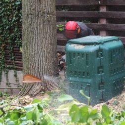 baumfaeller60 - Der Baum muss weg – Kletterer am Werk