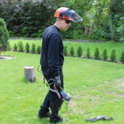 baumfaeller8 - Der Baum muss weg – Kletterer am Werk