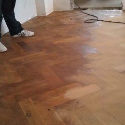 2012 03 14 001 005 - Bildergalerie – Wohnung 2 im Erdgeschoss