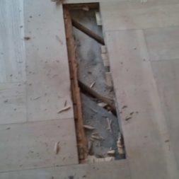 2012 03 21 001 008 - Bildergalerie – Wohnung 2 im Erdgeschoss