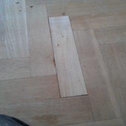 2012 03 21 001 014 - Bildergalerie – Wohnung 2 im Erdgeschoss