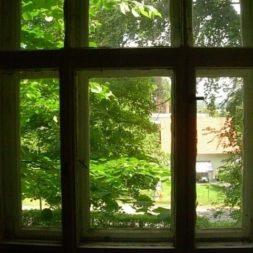DSCN43581 - Bildergalerie – Wohnung 2 im Erdgeschoss – Vorher