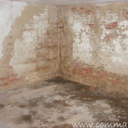DSCN4438 - Bildergalerie - Der Keller