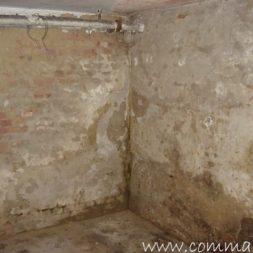 DSCN4447 - Bildergalerie - Der Keller