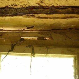 DSCN4460 - Bildergalerie - Der Keller