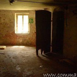 DSCN4464 - Bildergalerie - Der Keller