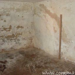 DSCN4480 - Bildergalerie - Der Keller