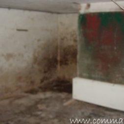 DSCN4488 - Bildergalerie - Der Keller