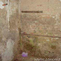DSCN4493 - Bildergalerie - Der Keller