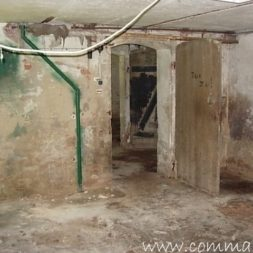 DSCN4494 - Bildergalerie - Der Keller