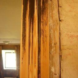 DSCN53291 - Bildergalerie – Wohnzimmer im Obergeschoss
