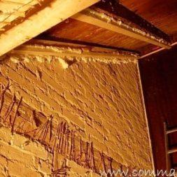 DSCN53751 - Bildergalerie – Das Dachgeschoss
