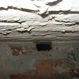 DSCN6378 - Bildergalerie – Wohnung 1 im Erdgeschoss