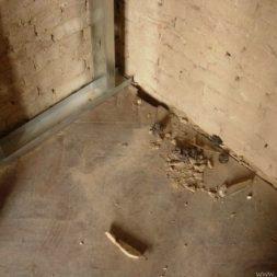 DSCN6379 - Bildergalerie – Wohnung 1 im Erdgeschoss
