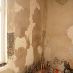 DSCN6722 - Bildergalerie – Wohnung 1 im Erdgeschoss