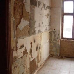 DSCN7360 - Bildergalerie – Wohnung 2 im Erdgeschoss