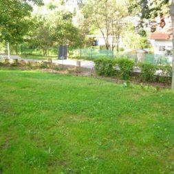 bilder vom garten13 - Bildergalerie – Der Garten 3