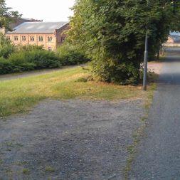 diebstahl der heckenpflanzen 8 - Bildergalerie – Der Garten 3