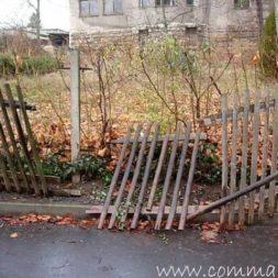 einbruch und vandalismus 10 - Bildergalerie – Der Garten 5