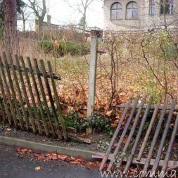 einbruch und vandalismus 11 - Bildergalerie – Der Garten 5