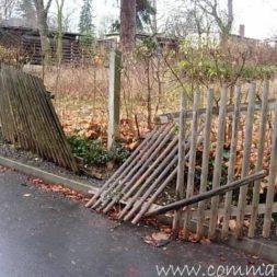 einbruch und vandalismus 9 - Bildergalerie – Der Garten 5