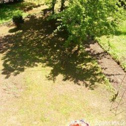 granitpflaster im garten 12 - Bildergalerie – Der Garten 5