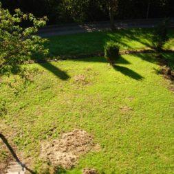 granitpflaster im garten 14 - Bildergalerie – Der Garten 2