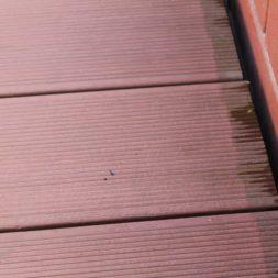 wpc terassendiele reinigen12 - WPC Terrassendiele mit Hochdruck reinigen