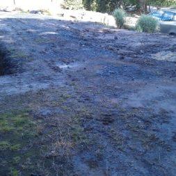 trockenlegen abtransport erde 5 - Trockenlegung des Hauses – Freilegen des Kellerfundaments