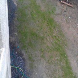 rasenanlegen nach dem trockenlegen 5 - Trockenlegung des Hauses - Einbringen von Drainage und Wasserrohren