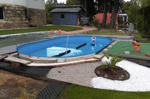 winterharte palmen an den pool pflanzen 27 - Projekt Poolbau - Neue Pläne - neu durchdacht
