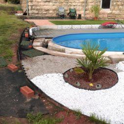palme und neuer rasen am pool 14 - Carrara Kies und Palme am Pool