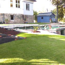 palme und neuer rasen am pool 18 - Carrara Kies und Palme am Pool