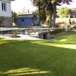 palme und neuer rasen am pool 19 1 - Pool Aussenanlagen vorbereiten - Platz schaffen für die Rasenanlage