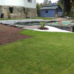 palme und neuer rasen am pool 22 - Carrara Kies und Palme am Pool