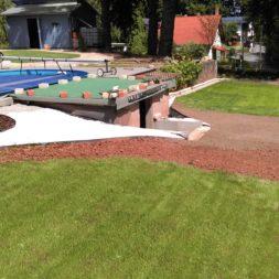 palme und neuer rasen am pool 4 - Carrara Kies und Palme am Pool