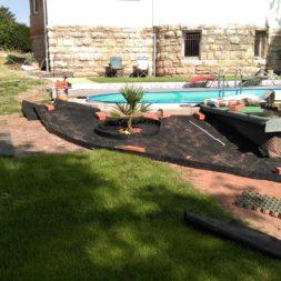 winterharte palmen an den pool pflanzen 10 - Carrara Kies und Palme am Pool