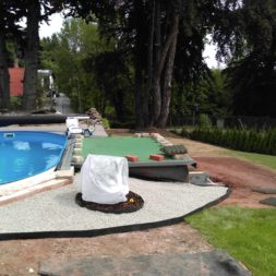 winterharte palmen an den pool pflanzen 13 - Carrara Kies und Palme am Pool