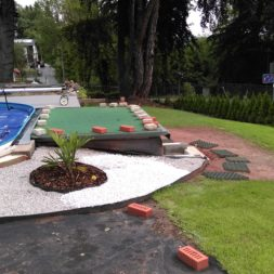winterharte palmen an den pool pflanzen 15 - Carrara Kies und Palme am Pool
