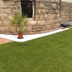 winterharte palmen an den pool pflanzen 24 - Carrara Kies und Palme am Pool