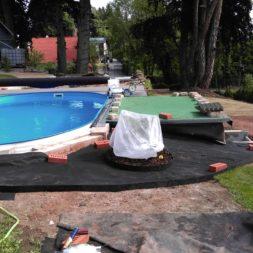 winterharte palmen an den pool pflanzen 11 - Palmen für den Pool - Urlaubsstimmung im eigenen Garten