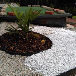 winterharte palmen an den pool pflanzen 17 - Palmen für den Pool - Urlaubsstimmung im eigenen Garten