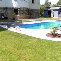 winterharte palmen an den pool pflanzen 33 - Palmen für den Pool - Urlaubsstimmung im eigenen Garten