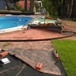 winterharte palmen an den pool pflanzen 5 - Palmen für den Pool - Urlaubsstimmung im eigenen Garten