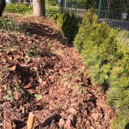 IMG 20200515 162124 - Automatische Heckenbewässerung selber bauen