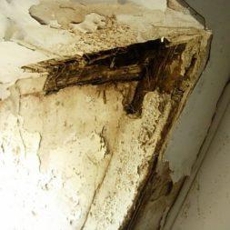dscn42401 - Der Einbau der Dachfenster-Abriss der Gauben